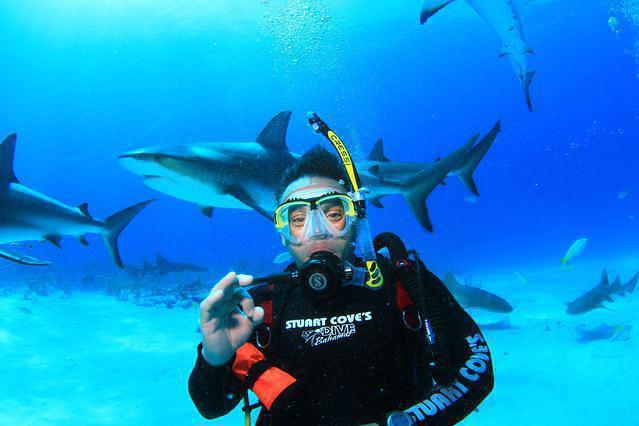 Diving in Bahamas, Nassau - By Juan Martin Retamar