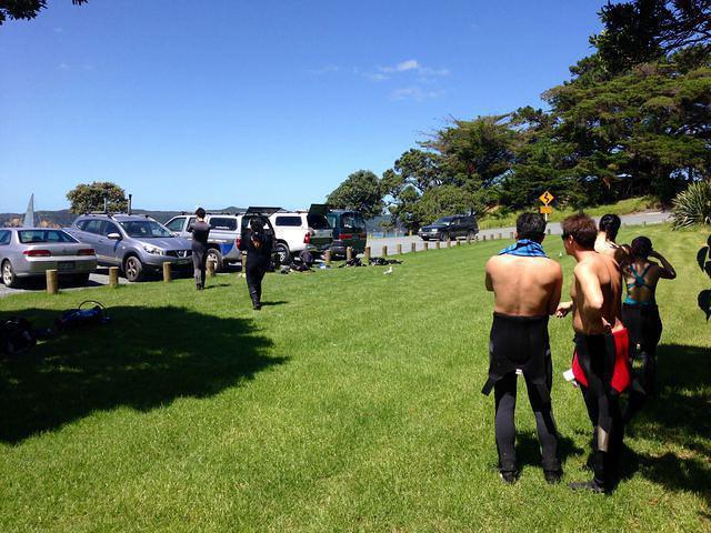 Performance Diver NZ Ltd - Dive Center in New Zealand